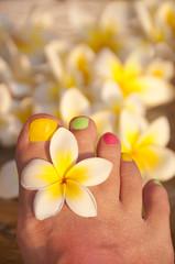 Pédicure et fleurs de frangipanier