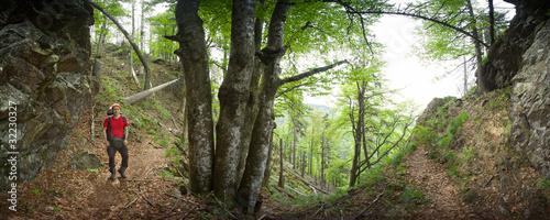 Schwarzwaldwanderer