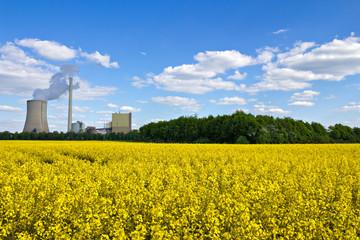 Rapsfeld und Kohlekraftwerk
