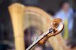 Violin and harp