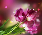 Fototapety Flowers. Anniversary Card Design
