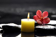 burning candle and pink orchid on zen stones/ tranquil spa scene