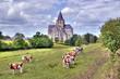 HDR de l'abbaye de Cerisy-La-Forêt