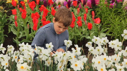boy sits near flowerbeds, he writes information in notebook