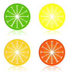 Icon a citrus