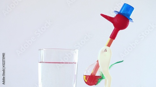 bird roly-poly wearing blue hat drinking water from glass