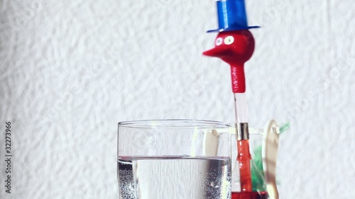 bird tilting wearing blue hat drinking water from glass