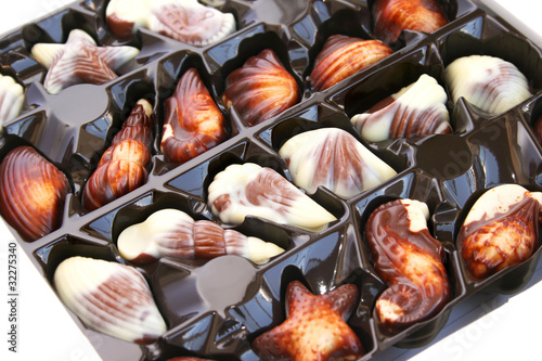 Chocolate seashells