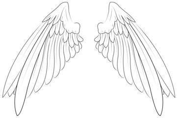 Flügelpaar