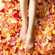 Sexy feet of a young female on beautiful bright rose petals