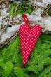 Rot gepunktetes Herz