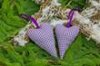 Zwei violette Herzen