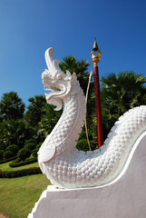King Naga with Blue Sky in Temple, Thailand