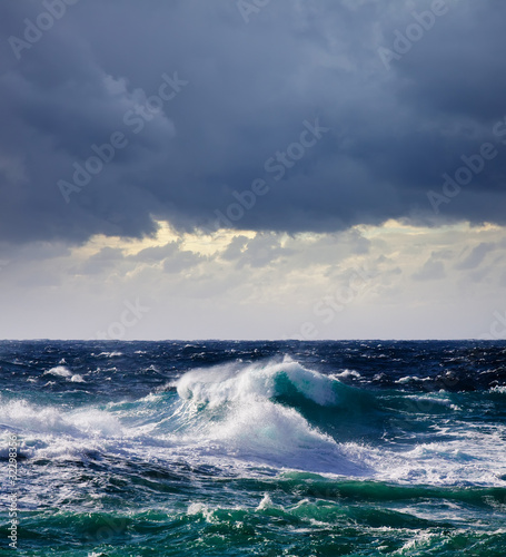 High sea wave