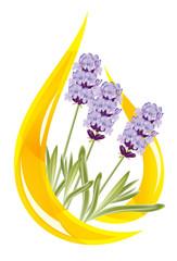 A drop of lavender essential oil. Vector illustration.