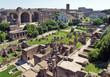 Il Foro Romano visto dal Palatino, Roma