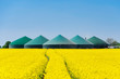 Leinwandbild Motiv Biogasanlage hinter einem Rapsfeld 3