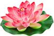 fleur artificielle nénuphar rose