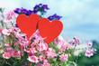 Coeur de Passion