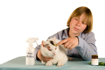 Milbenbehandlung