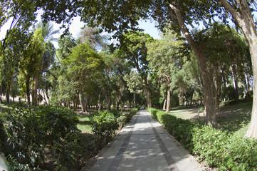 Botanical gardens at Aswan in Egypt