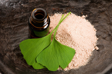 fresh leaves ginko biloba essential oil and powder - beauty trea