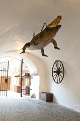 Brno Crocodile mascot