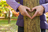 Close up of senior woman making heart-shape on tree trunk with hands