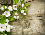 Spring Blossom over wooden background - 32351313