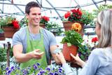 Fototapety Gardening.