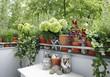 Leinwanddruck Bild - balkonpflanzen