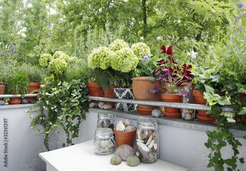 Leinwanddruck Bild balkonpflanzen