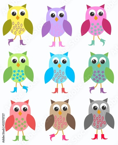 colourful owls