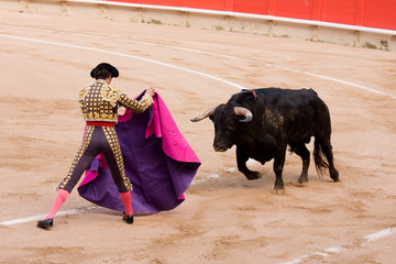 Spanish bullfighting