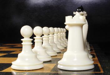 шахматы белого цвета на шахматной доске