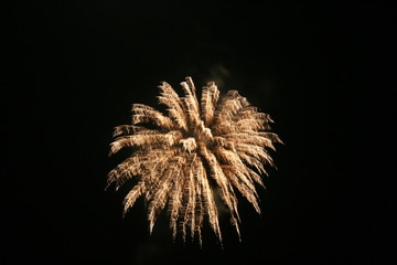 Firework in the sky.