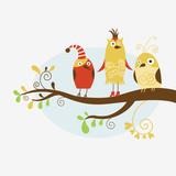 Fototapety funny birds