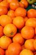 Oranges bio