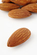 almond group on background