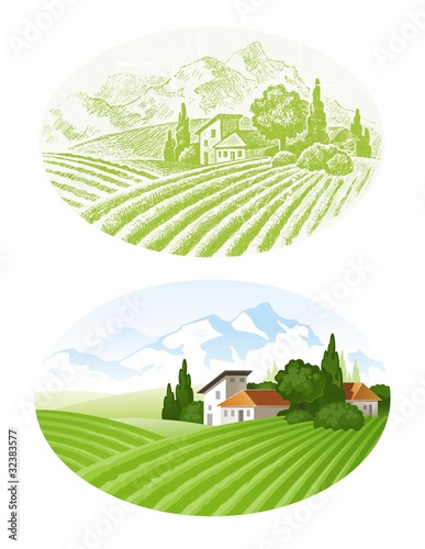 Vector landscape with cultivated fields, village and mounains