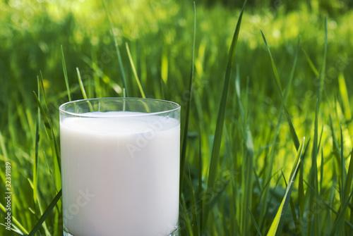 Leinwandbild Motiv Fresh natural milk