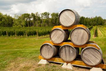 Oak wine barrels on a vineyard in Nova Scotia