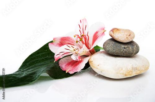 three rocks, leaf and flower