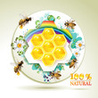 Bees and honeycombs over floral background with rainbow