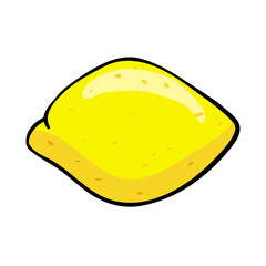 Vector sketch drawing of a whole lemon