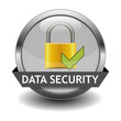 Icon Data Security