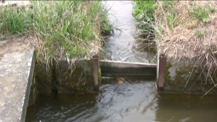 chiusina di irrigazione