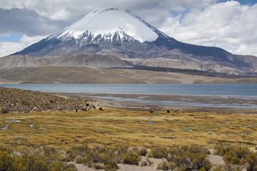 Lago Chungará y Volcán de Parinacota (Chile)