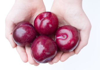 Large Plums