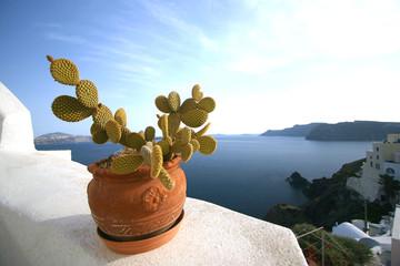 A Cactus Bowl and the Santorini Caldera